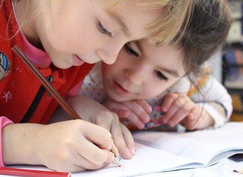 Percepties van schoolteamleden uit het gewoon onderwijs over de implementatie van het M-Decreet
