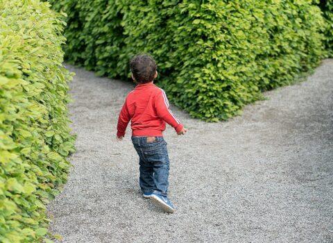 Welke schoolkenmerken beïnvloeden de schoolvoorkeuren van ouders?