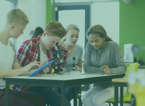 Extra middelen, meer gelijke onderwijskansen?