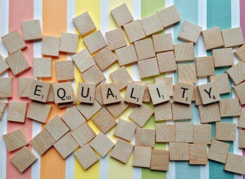 Naar een versterking van het Vlaamse gelijke-onderwijskansenbeleid. Verslag van een consensus-bevraging van experten